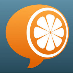 Standard Mandarin logo