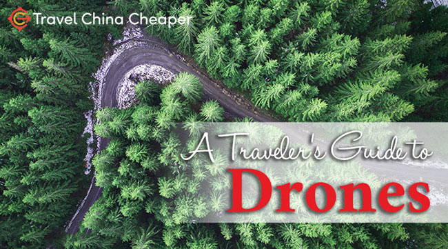 Traveler's Guide to Drones in 2020