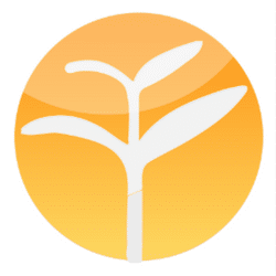 yoyo chinese logo